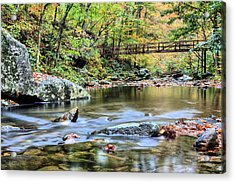 The Appalachian Trail Acrylic Print by JC Findley