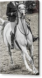 The Approach Show Jumping Acrylic Print