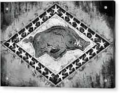 The Arkansas Razorbacks Black And White Acrylic Print by JC Findley