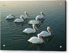 The Armada Acrylic Print by Robert Anschutz