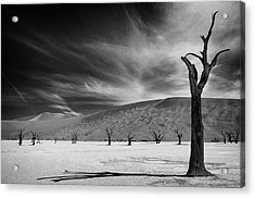 The Army Of The Dead Acrylic Print