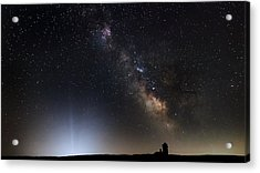 The Arrival Acrylic Print by Bill Wakeley