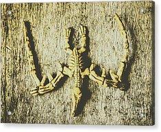 The Art Of Dinosaur Birds Acrylic Print