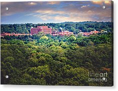 The Artesian Hotel In The Forest In Horizontal Acrylic Print by Tamyra Ayles