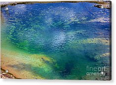 Acrylic Print featuring the photograph The Artist Pallet by Robert Pearson