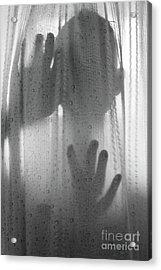 The Asylum Acrylic Print by Juli Scalzi