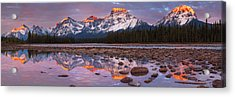The Athabasca River And Mount Fryatt Acrylic Print by Tomas Nevesely