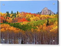 The Autumn Blanket Acrylic Print by John De Bord
