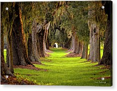 The Avenue Of Oaks 4 St Simons Island Ga Art Acrylic Print by Reid Callaway