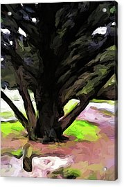 The Avenue Of Trees 1 Acrylic Print