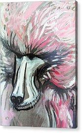 The Baboon   Acrylic Print