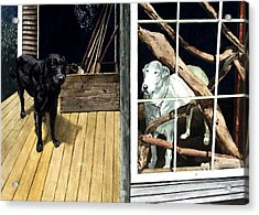 The Back Porch Acrylic Print by Perry Woodfin