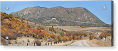 The Back Way Home Acrylic Print by Daniel Hebard