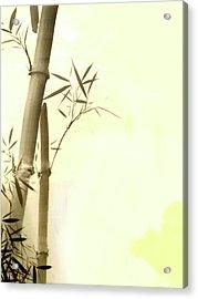 The Bamboo Branch Acrylic Print