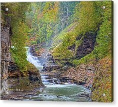 The Bashful Lower Falls Acrylic Print by Angelo Marcialis