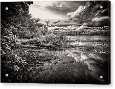 Acrylic Print featuring the photograph The Basin And Snails by Bob Orsillo