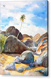 The Baths Palm Tree Acrylic Print