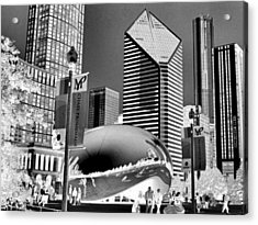 The Bean - 2 Acrylic Print