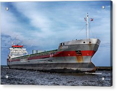 Acrylic Print featuring the photograph The Beatrix by Susan Rissi Tregoning
