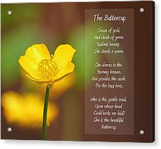 The Beautiful Buttercup Poem Acrylic Print