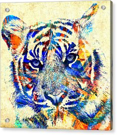 The Beautiful Tiger - Cream Acrylic Print by Stacey Chiew
