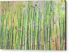 The Beauty Of A Bamboo Fence Acrylic Print by Angela A Stanton