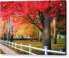 The Beauty Of Autumn In New England Acrylic Print