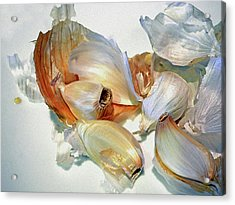 The Beauty Of Garlic Acrylic Print