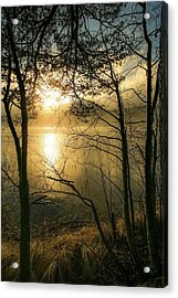 The Beauty Of Nature Acrylic Print