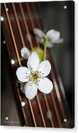 The Beauty Of Strings Acrylic Print by Linda Sannuti
