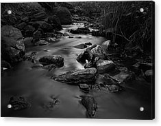 The Beck Acrylic Print