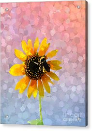 Acrylic Print featuring the photograph The Bee's Knees by Betty LaRue
