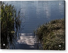 Acrylic Print featuring the photograph The Beginning by Odd Jeppesen