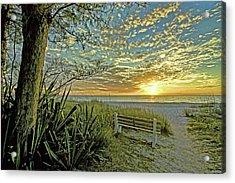 The Bench Acrylic Print