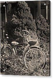 The Bicycle Garden II Acrylic Print by Jim Furrer