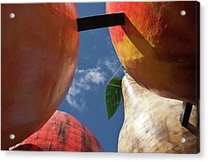 Acrylic Print featuring the photograph The Big Fruit by Odille Esmonde-Morgan