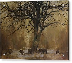 The Big Tree With Wild Boars Acrylic Print