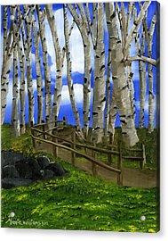 The Birch Tree Road Acrylic Print by Maria Williams