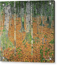 The Birch Wood Acrylic Print by Gustav Klimt
