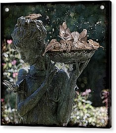 The Bird Bath Acrylic Print