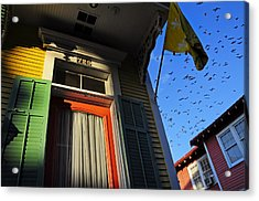 Acrylic Print featuring the photograph The Birds by Skip Hunt