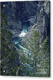 Acrylic Print featuring the painting The Black Canyon Of The Gunnison by RC DeWinter