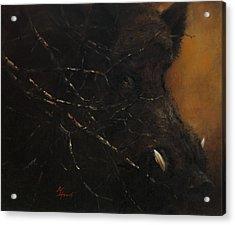 The Black Wildboar Acrylic Print