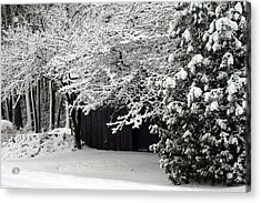 The Blizzard Is Over Acrylic Print by Jack G  Brauer