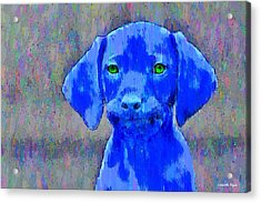 The Blue Dog - Da Acrylic Print by Leonardo Digenio