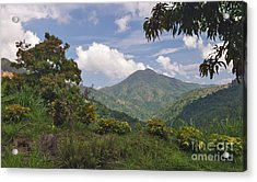 The Blue Mountains Acrylic Print