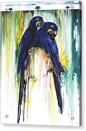 The Blue Parrots Acrylic Print by Anthony Burks Sr
