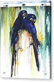The Blue Parrots Acrylic Print