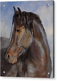 The Blue Roan Acrylic Print by Debra Mickelson