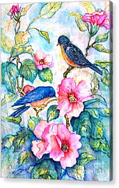 The Bluebirds Are Back Acrylic Print by Norma Boeckler